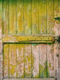 Puertas verdes Textura de madera Pintura lamentable, irradiada vieja Foto de archivo