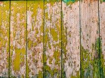 Puertas verdes Textura de madera Pintura lamentable, irradiada vieja Fotografía de archivo libre de regalías