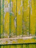Puertas verdes Textura de madera Pintura lamentable, irradiada vieja Fotos de archivo libres de regalías