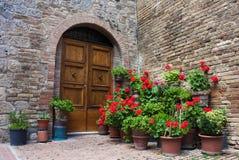 Puertas viejas con las flores Imagen de archivo libre de regalías