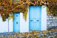 Puertas viejas enmarcadas de las hojas de otoño de los tendrils de la vid foto de archivo