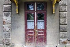 Puertas y ventanas de madera viejas con la planta en la pared Imágenes de archivo libres de regalías