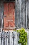 Puertas y ventanas de madera viejas con la planta en la pared Fotografía de archivo