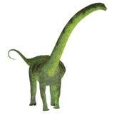 Puertasaurus dinosaur na bielu Zdjęcie Stock