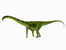 Puertasaurus Dinosaur Side View Stock Photos