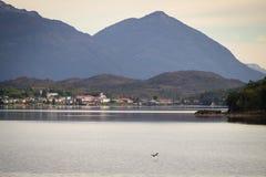 Puerto伊甸园在智利峡湾,巴塔哥尼亚 村庄的细节 免版税库存图片