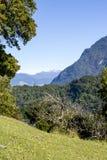 Puerto Chacabuco - il Sudamerica - Patagonia - paesaggio fotografia stock libera da diritti