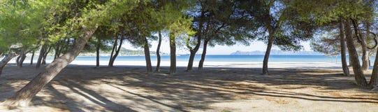 Puerto de Alcudia strand royaltyfri foto