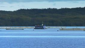 Puerto de color salmón del macquarie de las plumas de la granja según lo visto de la travesía del río de gordon almacen de video