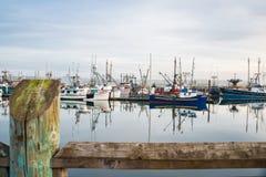 Puerto de flota pesquera en los muelles del puerto, Newport, mineral de Newport Imágenes de archivo libres de regalías