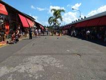 Puerto de frutos σε Tigre στοκ εικόνα