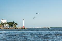 Puerto de la ciudad de Belice imagen de archivo