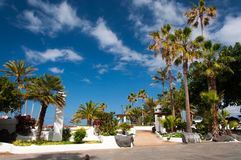 Puerto de la cruz. Promenade with palm tree garden in Puerto de la Cruz near Lago Martianez, Tenerife, Canary Islands, Spain stock image