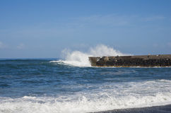 Puerto de la Cruz royalty-vrije stock fotografie