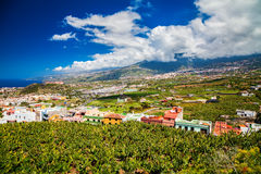 Puerto De La Cruz dolina z bananowymi plantacjami i agricultura Obrazy Stock