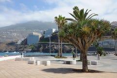 Puerto de la Cruz promenade. Tenerife, Spain Royalty Free Stock Photo