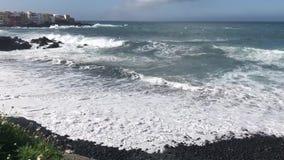 Puerto de la Cruz, Tenerife stock video