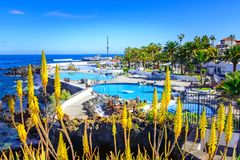 Puerto de la Cruz, Tenerife, Canary Islands, Spain: Saltwater pools Lago Martianez Stock Images