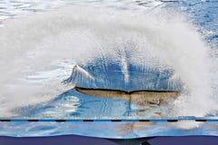 PUERTO DE LA CRUZ, TENERIFE/SPAIN - 23 DE FEBRERO: Orca m imagenes de archivo