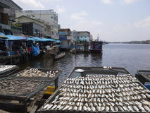 Puerto de los pescados en NaKhonSiThammarat, Tailandia Fotos de archivo libres de regalías