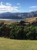 Puerto de Lyttleton, Cantorbery NZ Imágenes de archivo libres de regalías