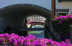 Puerto de Mogán canal with bougainvillea Stock Photography