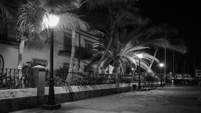 Puerto de Mogan, i svartvitt Kanarief?gel?ar Spanien royaltyfria foton