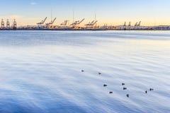 Puerto de Oakland Fotografía de archivo libre de regalías