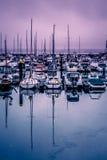 Puerto de Torquay Foto de archivo libre de regalías