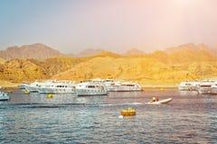 Puerto deportivo: Barcos de visita turístico de excursión del placer en el estacionamiento de PA del barco Foto de archivo libre de regalías