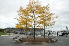 Puerto deportivo de Boston fotos de archivo