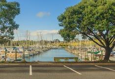 Puerto deportivo en puerto del golfo de Nueva Zelanda Foto de archivo libre de regalías