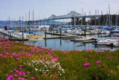 Puerto deportivo en San Francisco Imagen de archivo