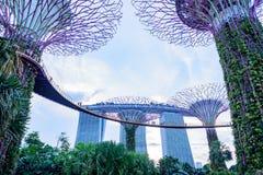 Puerto deportivo para la bahía, Singapur imagen de archivo libre de regalías