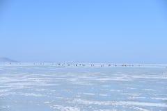 Puerto en hielo Foto de archivo libre de regalías