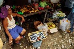 Puerto Galera, Filippinerna arkivfoto