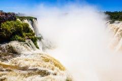 Iguazu National Park Stock Images