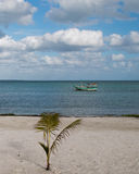 Puerto Juarez fishing boat in harbor as seen from beach as seen from beach in Puerto Juarez harbor in Cancun Mexico Stock Photography