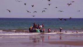 Puerto Lopez, EC - 20160819 - Lopez fiskebåtar med fåglar arkivfilmer