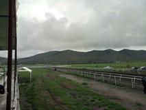 Puerto México赛马 免版税库存图片