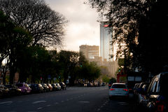 Puerto Madero, Buenos Aires. Avenue in Puerto Madero, Buenos Aires at sunset stock image
