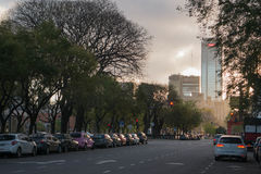 Puerto Madero, Buenos Aires. Avenue in Puerto Madero, Buenos Aires at sunset royalty free stock photography