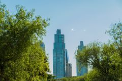 Puerto Madero buildings framed by nature, green trees Stock Image