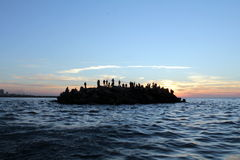 Puerto mar?timo de Gaza Foto de archivo