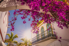 Puerto Mogan architecture Royalty Free Stock Photos