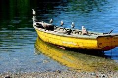 Puerto Montt Στοκ Εικόνες