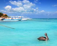 Puerto Morelos beach Mayan riviera Caribbean sea Stock Photo