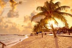 Puerto Morelos beach in Riviera Maya Royalty Free Stock Images