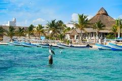 Puerto Morelos beach in Riviera Maya. At Mayan Mexico stock photo