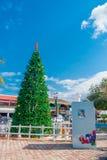 Puerto Morelos, México - 10 de janeiro de 2018: Vista exterior de uma árvore enorme do christmast no parque em Puerto Morelos, Iu Fotos de Stock Royalty Free